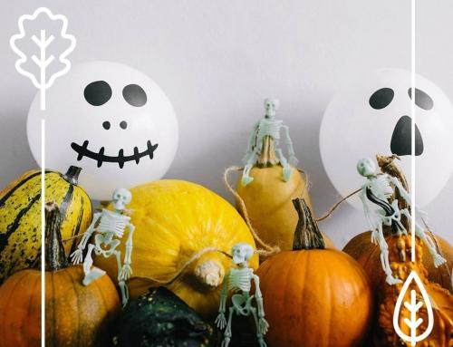 Promocja w kolorach Halloween