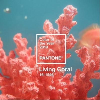 kolor Pantone Living Coral
