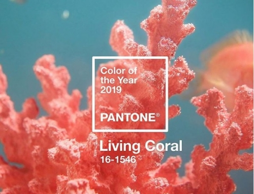 Kolor roku 2019 – Living Coral