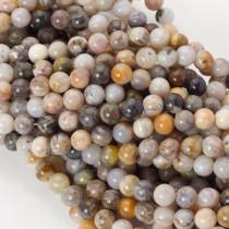Koral fossil kulka gładka 8mm