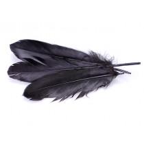 Pióra naturalne barwione koloru czarnego 10-16cm