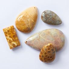 Koral skamieniały fossil zawieszka łezka nieregularna 38-69mm