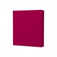 Modelina termoutwardzalna 50gram 5x5x1cm  cherry red