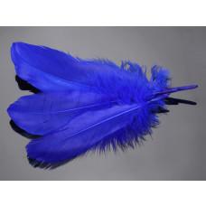 Pióra naturalne barwione koloru niebieskiego 10-16cm