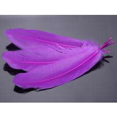 Pióra naturalne barwione koloru fioletowego 10-16cm