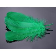 Pióra naturalne barwione koloru zielonego 10-16cm