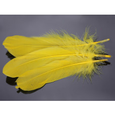 Pióra naturalne barwione koloru żółtego 10-16cm