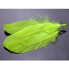 Pióra naturalne barwione koloru neonowo zielonego 10-16cm