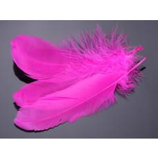 Pióra naturalne barwione koloru neonowo różowego 10-16cm