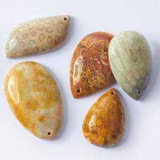 Koral skamieniały fossil zawieszka łezka 30-54mm