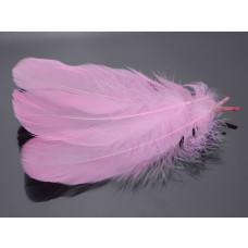Pióra naturalne barwione koloru jasno różowego 10-16cm